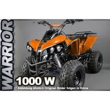 ECO Warrior Quad 1000W