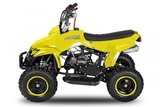 Quad kaufen buy nitro motors newest cheap