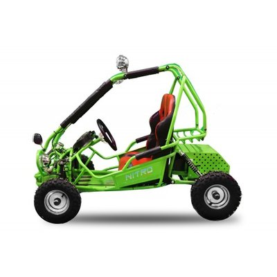 ECO Buggy | 750W | 2-persoons