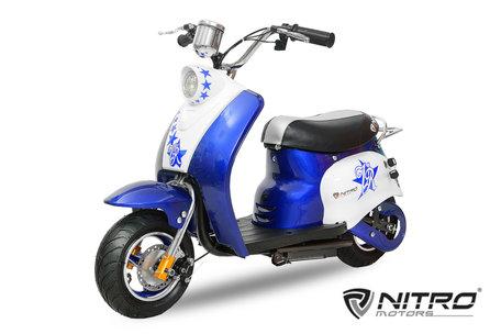 Eco Retro Scooter| 350W | 24V