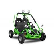 Elektrische buggy 450W